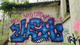 Grafitti på den övergav väggen på det nordliga statliga mentala sjukhuset royaltyfria bilder