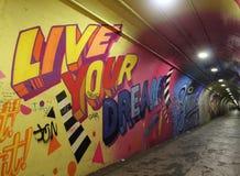 Grafitti på väggarna av en tunnel, New York City Royaltyfri Foto