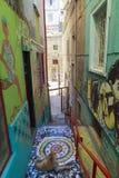 Grafittikonst av den ValparaÃso staden i Chile Royaltyfria Bilder
