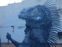 Grafittikonst, vägg i San Juan, Puerto Rico Royaltyfri Bild