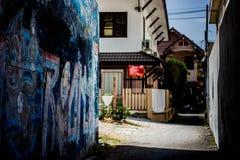 Grafittis da rua Imagens de Stock Royalty Free