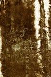 Grafittis em uma parede antiga Fotos de Stock