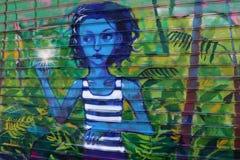 Grafittis nas paredes Fotos de Stock Royalty Free
