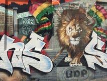 Grafittis - rei do leão Fotos de Stock