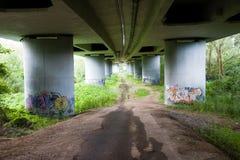 Grafittis sob a ponte fotografia de stock royalty free