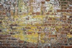 Grafittitegelstenvägg Arkivfoton