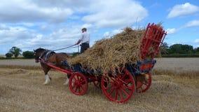 Grafschafts-Pferd mit einem Lastwagen des Strohs Lizenzfreies Stockfoto