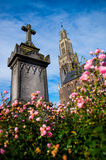Grafsteen met roze rozen royalty-vrije stock afbeelding