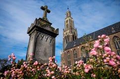 Grafsteen met roze rozen Stock Fotografie