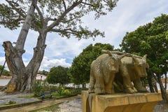 Grafstenen in de begraafplaats in Barichara, Colombia Royalty-vrije Stock Fotografie