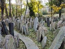Grafstenen in de Joodse begraafplaats Stock Afbeelding