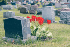 Grafstenen in een begraafplaats Stock Afbeeldingen
