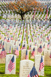Grafstenen met Amerikaanse Vlaggen in de Begraafplaats van Oorlogsveteranen stock fotografie
