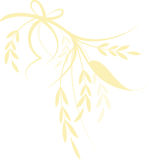 Grain. Simple illustration of grain and summer grass tied together with a ribbon Stock Image