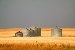 Grain bins Royalty Free Stock Photos