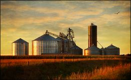 Grain bins Stock Image
