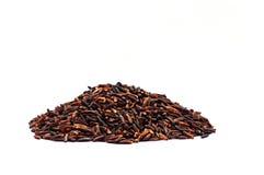 Grain Black Jasmine Rice Or Thai Name Is Hom Nil Rice On White B Stock Photography