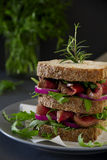 Grain bread sandwich with roast beef. Onion and arugula Stock Images