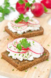 Grain bread with soft cheese, radish and greens Stock Images