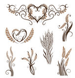 Grain, bread, wheat, bakery Royalty Free Stock Photos