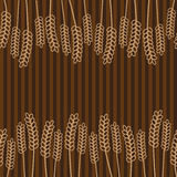 Grain brown pattern  Stock Images