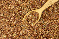 Grain brown rice with a spoon  background Royalty Free Stock Images