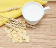 Grain cereal with milk Royalty Free Stock Photo