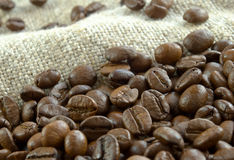 Grain coffee. Fried, grain coffee, on rough fabrics close-up, sackcloths skim under Royalty Free Stock Photography