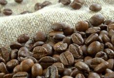Grain coffee Royalty Free Stock Photography