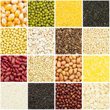 Grain collection Royalty Free Stock Image