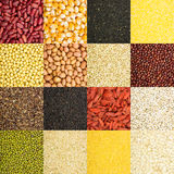 Grain collection Royalty Free Stock Images
