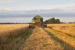 Grain combine Royalty Free Stock Photo
