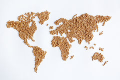 Grain continent. Wheat grains making up continent of world map Royalty Free Stock Image