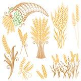 Grain, corn, bakery. Vector set of colorful grain, corn Stock Photo