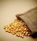 The grain corn in small sack Stock Photo