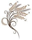 Grain, corn, wheat. Colorful grain tendril, bakery decoration Royalty Free Stock Image