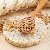 Grain Crispbread cracker Royalty Free Stock Photo