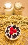 Grain d'avoine et farine d'avoine avec des fruits frais Photographie stock libre de droits