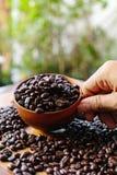 Grain de café Photos stock