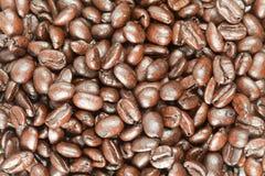 Grain de café après rôti Images stock