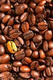 Grain de café d'or images libres de droits