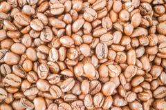 Grain de café et carte de visite professionnelle de visite rôtis Photos libres de droits