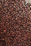 Grain de café rôti dans la cabine de ventes Photo stock