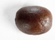 Grain de café rôti d'isolement Photographie stock libre de droits