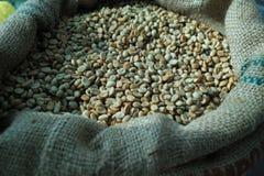 Grain de café vert Photographie stock