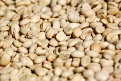 Grain de café vert Photo stock