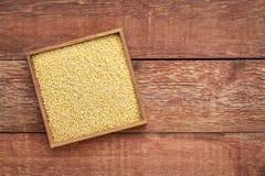 Grain de millet dans une boîte en bois Images libres de droits