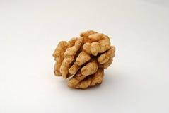 Grain de noix circassienne Photographie stock libre de droits