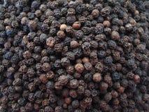 Grain de poivre Image stock