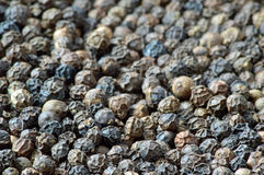 Grain de poivre organique Photo stock